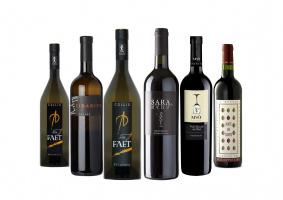 Carton découverte vins du Friuli